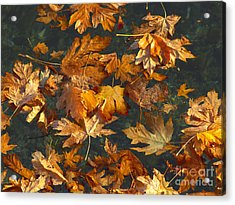 Fall Maple Leaves On Water Acrylic Print by Sharon Talson