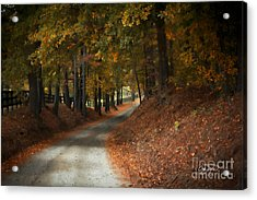 Fall's Fast Arrival Acrylic Print by Cris Hayes