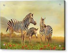 Family Ties Acrylic Print by Trudi Simmonds