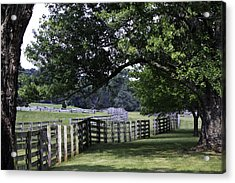 Farmland Shade Appomattox Virginia Acrylic Print by Teresa Mucha