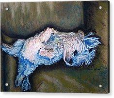 Favorite Show Acrylic Print by D Renee Wilson