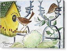 Feeding The Baby Wrens Acrylic Print by Marilyn Jacobson