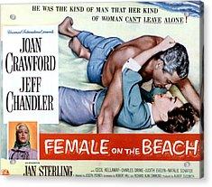 Female On The Beach, Jeff Chandler Acrylic Print by Everett