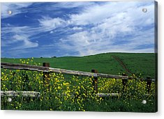 Fence And Flowers Acrylic Print by Kathy Yates