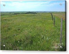 Fence On The Alberta Prairie Acrylic Print by Jim Sauchyn