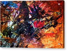 Fight In The Air Acrylic Print by Aquira Kusume