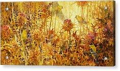 Finch Feast Acrylic Print by Floy Zittin