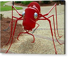 Fire Ant Art Acrylic Print by Danny Jones