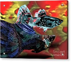 Fish In Digital Art Acrylic Print by Mario Perez