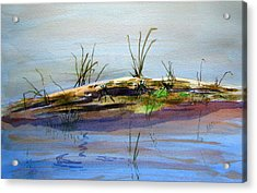 Floating Log Acrylic Print by Ramona Kraemer-Dobson