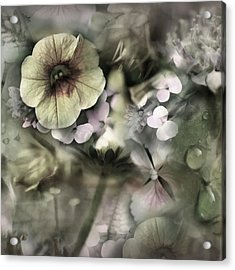Floral Montage Acrylic Print by Bonnie Bruno