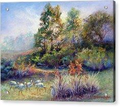 Florida Ibis Landscape Acrylic Print by Denise Horne-Kaplan