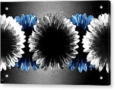 Flower Board3 Acrylic Print by Mark  Ross