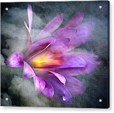 Flower Spirit Acrylic Print by Svetlana Sewell