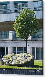 Flowerbeds And Tree Acrylic Print by Andrew  Michael