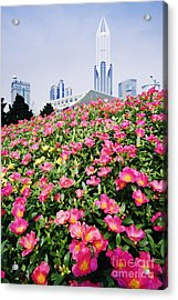 Flowers And Architecture Around Peoples Square Acrylic Print by Jeremy Woodhouse
