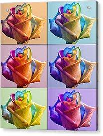 Flowers Acrylic Print by Yosi Cupano