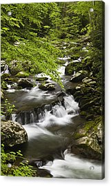 Flowing Mountain Stream Acrylic Print by Andrew Soundarajan