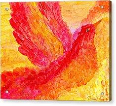 Flying Free Acrylic Print by Denise Hoag