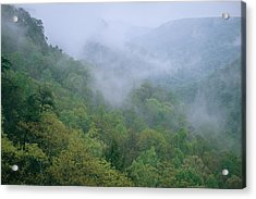 Fog Drifts Across A Cove In Tennessee Acrylic Print by Stephen Alvarez