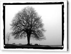 Foggy Day H-5 Acrylic Print by Mauro Celotti