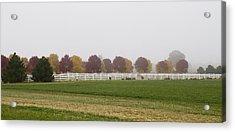 Foggy Fall Acrylic Print by Joel Witmeyer