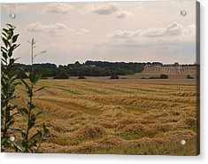 Food And Bedding Acrylic Print by Odd Jeppesen