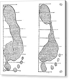 Footprint Forensics, 19th Century Acrylic Print by