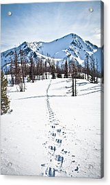 Footprints Leads To Frosty Mountain Acrylic Print by Christopher Kimmel