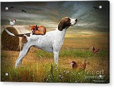 Fox And Hound Acrylic Print by Ethiriel  Photography