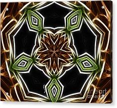 Fractal Kaleidoscope Acrylic Print by Cheryl Young