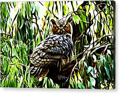 Fractal-s -great Horned Owl - 4336 Acrylic Print by James Ahn