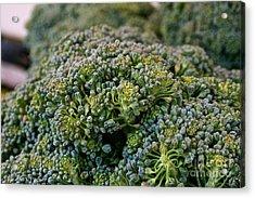 Fresh Broccoli Acrylic Print by Susan Herber