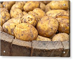 Freshly Harvested Potatoes In A Wooden Bucket Acrylic Print by Tom Gowanlock