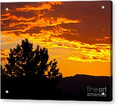 Friday Night Lights Acrylic Print by Dana Kern
