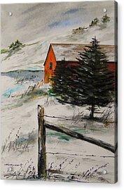 Frozen Pond Acrylic Print by John Williams
