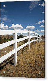 Galloping Fence Acrylic Print by Peter Tellone