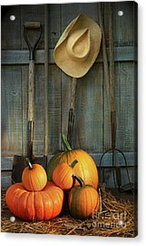 Garden Tools In Shed With Pumpkins Acrylic Print by Sandra Cunningham
