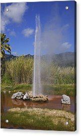 Geyser Napa Valley Acrylic Print by Garry Gay