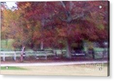 Ghost Horse's Back At Home Acrylic Print by Greg Geraci