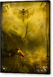 Giraffe And The Heart Of Darkness Acrylic Print by Paul Grand