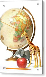 Globe With Toys Animals On White Acrylic Print by Sandra Cunningham