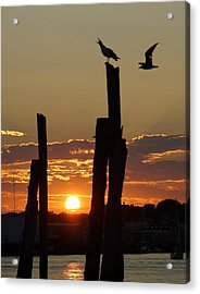 Gloucester Sunset Acrylic Print by Matthew Green