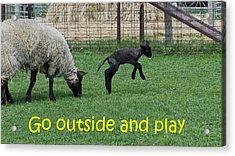 Go Outside And Play Acrylic Print by LeeAnn McLaneGoetz McLaneGoetzStudioLLCcom