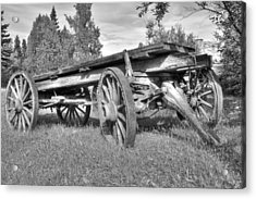 Gold Rush Wagon Acrylic Print by Thomas Payer
