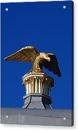Golden Eagle Acrylic Print by Lisa Phillips