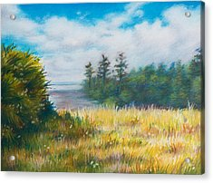 Golden Meadow In The Sun Acrylic Print by Anna Abramska
