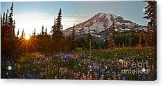 Golden Meadows Of Wildflowers Acrylic Print by Mike Reid