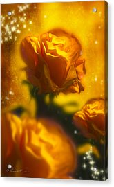 Golden Roses Acrylic Print by Svetlana Sewell