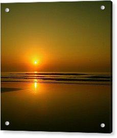 Golden Sunrise Acrylic Print by Darren Cole Butcher